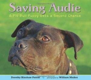 Saving Audie - on adopting a dog
