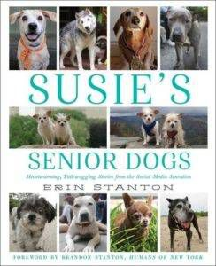 Susie's Senior Dogs - on adopting a dog