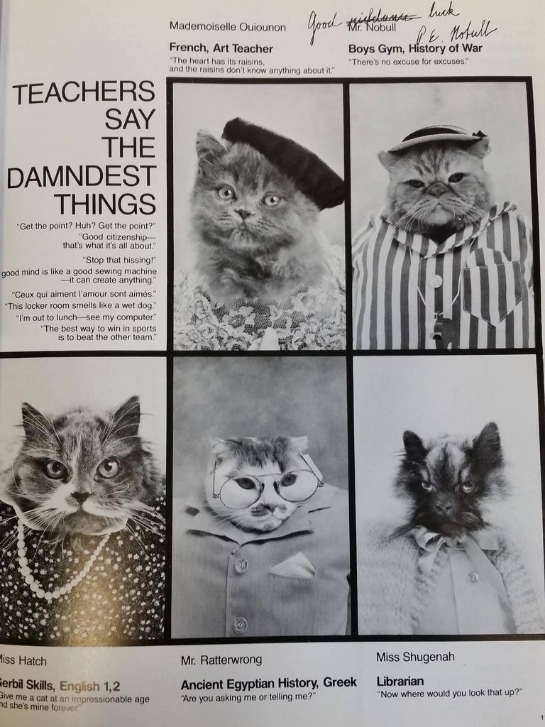 Cat High The Yearbook Page