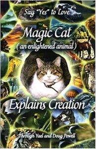 Magic Cat Explains Creation by Yael Powell and Doug Powell