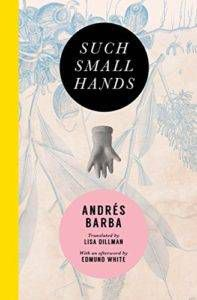 Such Small Hands by Andres Barba