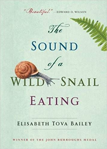 sound of a wild snail eating cover