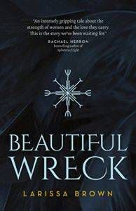 Beautiful Wreck By Larissa Brown cover