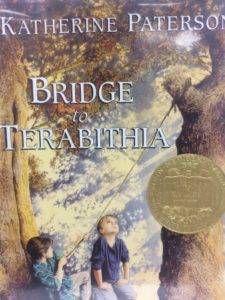 Bridge Book Cover
