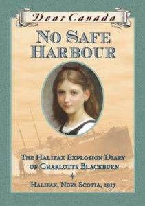 no safe harbour book cover
