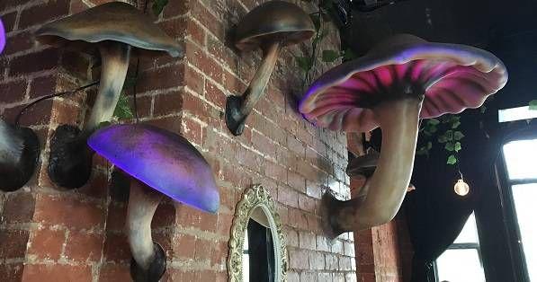 mushrooms wonderland lighting StoryVille