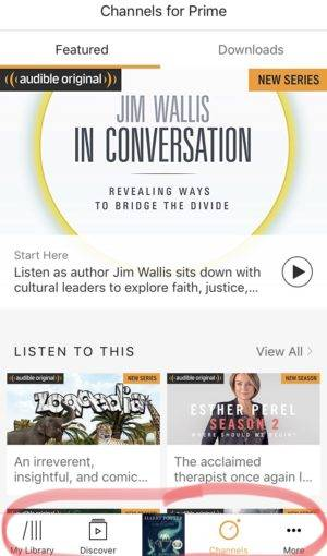 Your Top Audiobooks FAQs, Answered