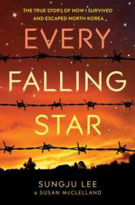 every falling star cover image