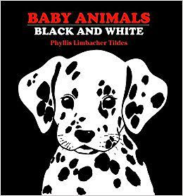 Black and white board books: Book cover of Baby Animals: Black and White by Tildes