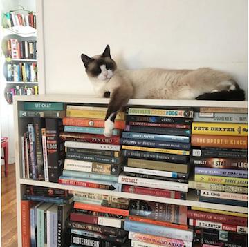 Bookish instagram photo