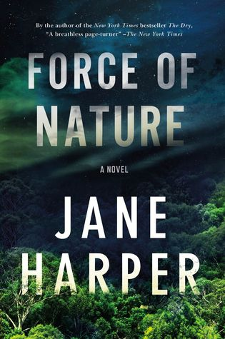 cover image: a forest with a night sky and the title letters in mist