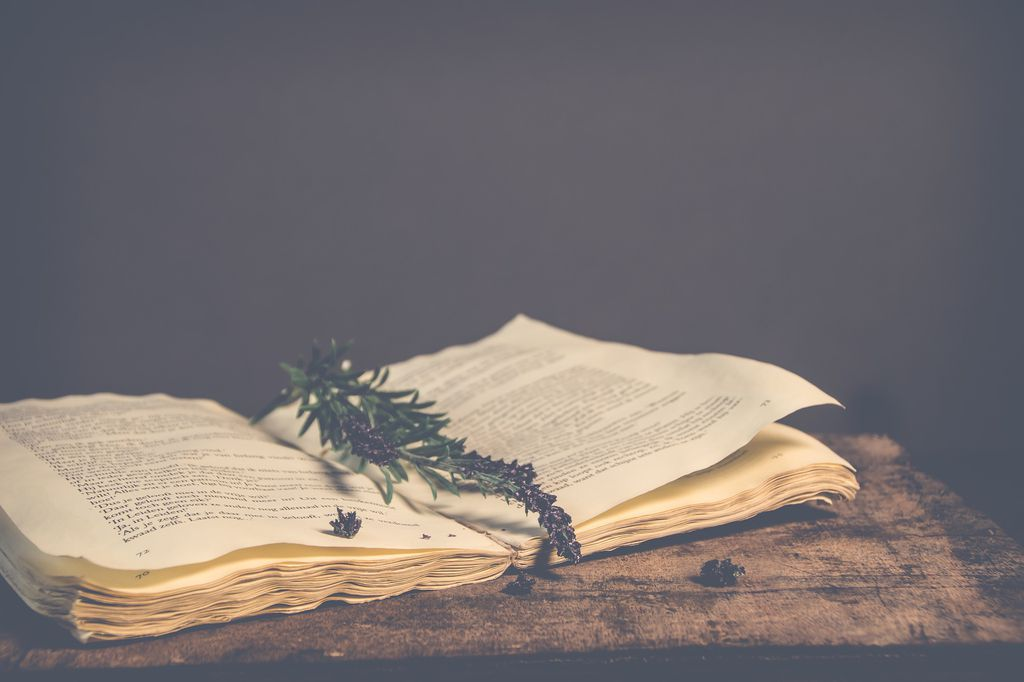 An old book with a sprig of rosemary