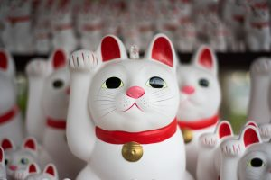 Japanese cat toys in Quotes from The Wind-up Bird Chronicle | BookRiot.com