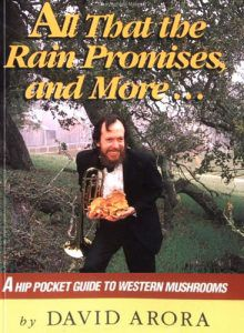 all that the rain promises and more | mushrooming