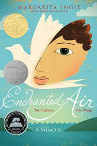 enchanted air book cover