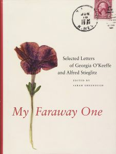 my faraway one cover