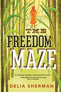 the freedom maze book cover