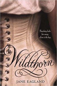 wildthorn book cover