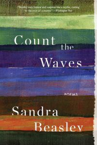 Count the Waves by Sandra Beasley cover