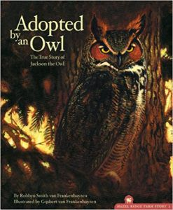 Adopted By An Owl by Robbyn Smith van Frankenhuyzen book cover owl books