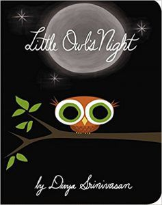 Little Owl's Night book cover