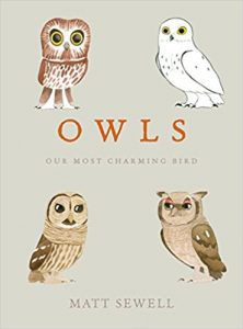 Owls: Our Most Charming Bird by Matt Sewell book cover