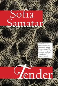 Book cover of Tender by Sofia Samatar book riot read harder challenge fairy tale retellings by authors of color