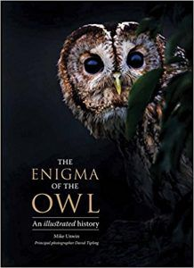The Enigma of an Owl by Mike Unwin book cover