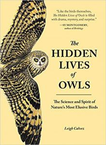 The Hidden Lives of Owls by Leigh Calvez owl books