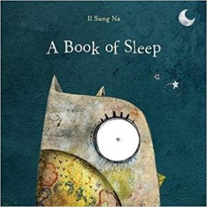 a book of sleep by il sung na book cover owl books