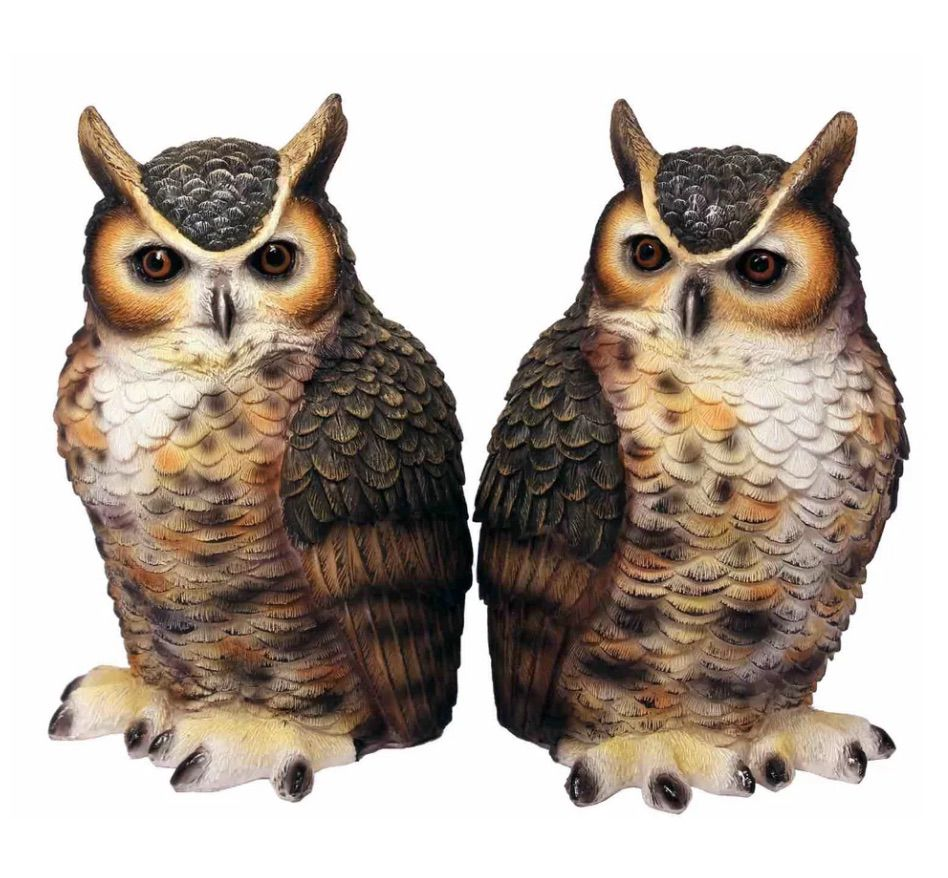 Great Horned Owl Bookends