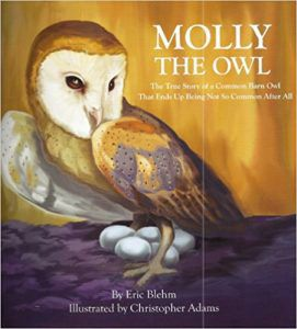MOLLY THE OWL: THE TRUE STORY OF A COMMON BARN OWL THAT ENDS UP BEING NOT SO COMMON AFTER ALL BY ERIC BLEHM book cover