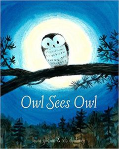 Owl Sees Owl by Laura Godwin book cover