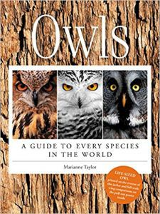 Owls: A Guide To Every Species In The World by Marianne Taylor book cover