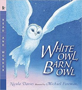WHITE OWL, BARN OWL BY NICOLA DAVIES book cover