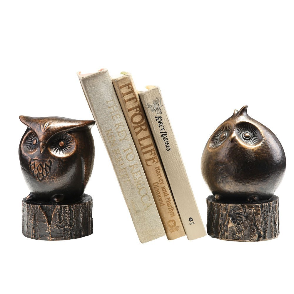 Captivating Wide Eyed Owl Bookends