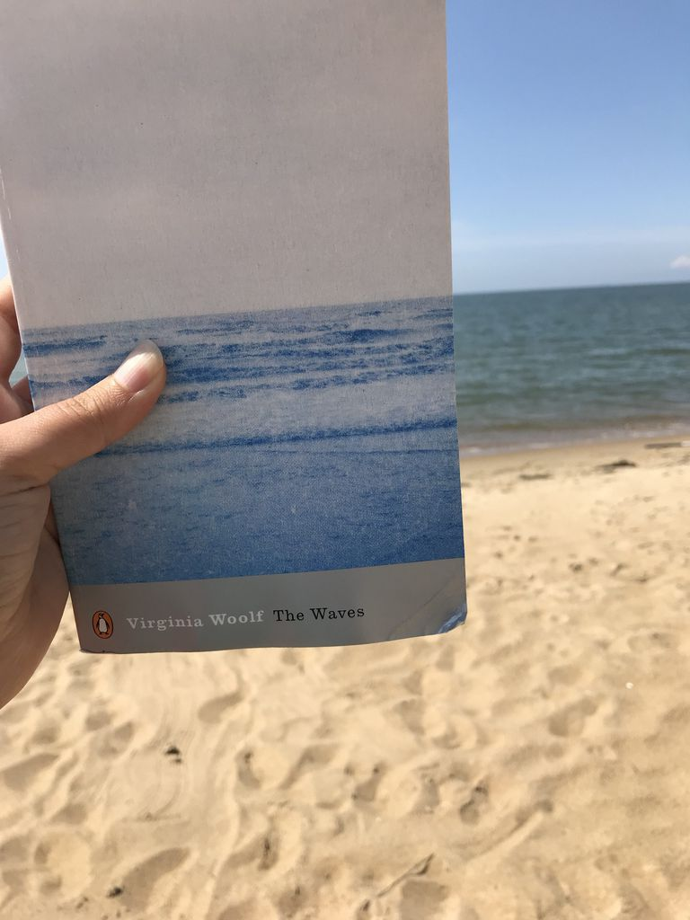 The waves book cover beach