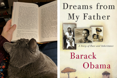 My cat reviews Dreams from My Father by Barack Obama