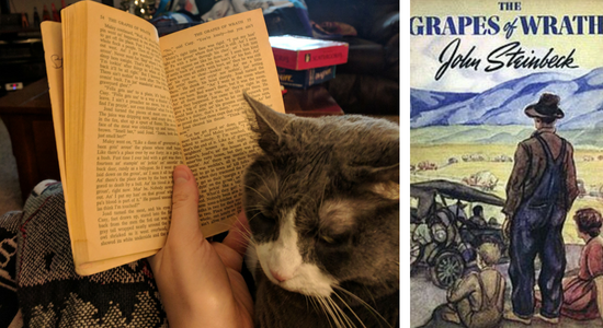 My cat reviews Grapes of Wrath by John Steinbeck