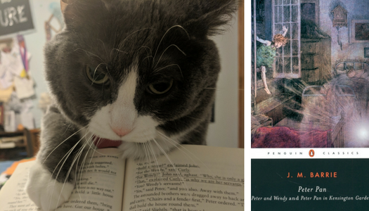 My cat reviews Peter Pan by J.M. Barrie