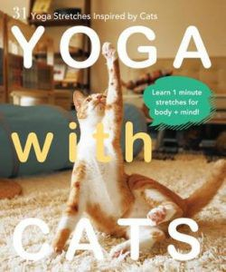 Yoga With Cats by Masako Miyakawa