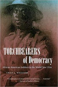 Torchbearers of Democracy Book Cover