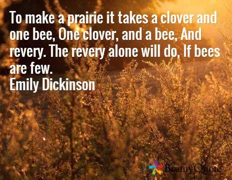 Emily Dickinson Poem To Make a Prairie