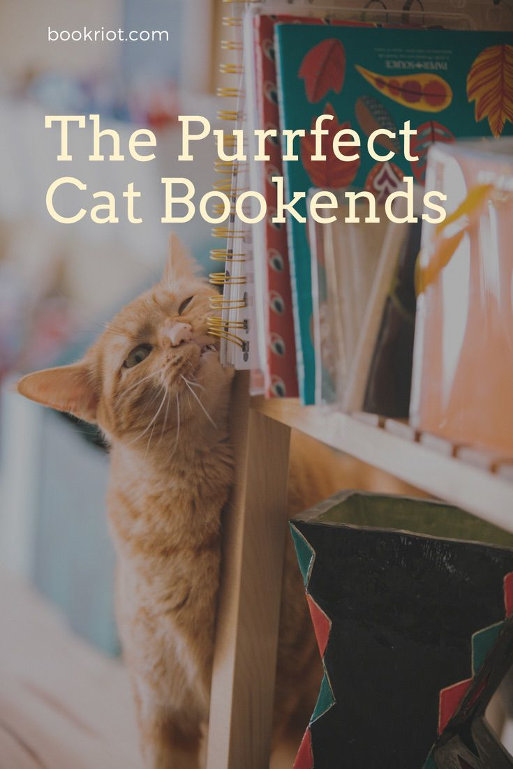 Find the perfect cat bookends for every type of bookshelf (and every type of cat lover) cat bookends | animal bookends | bookends | book gifts | cat gifts | vintage bookends | wood bookends | antique bookends