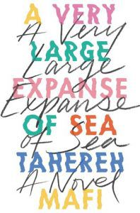 A Very Large Expanse of Sea cover