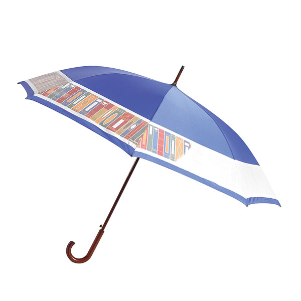 Paraguas azul con libro espina en el borde