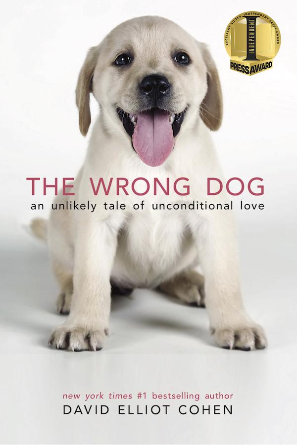10 Heartwarming Animal Books
