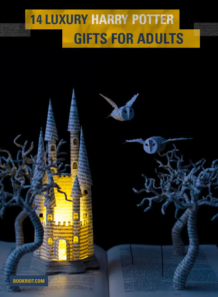luxury harry potter gifts for adults