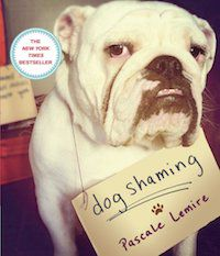 Dog Shaming book cover