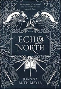 Echo North from 25 YA Books To Add To Your Winter TBR | bookriot.com